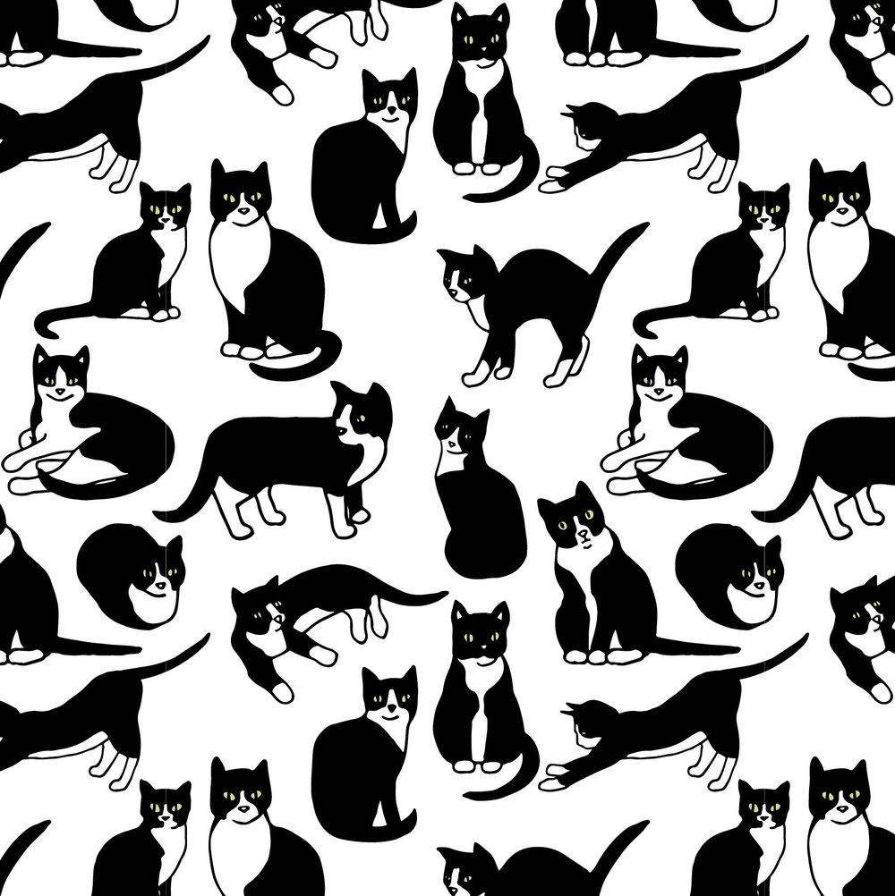 tuxedocats.jpg