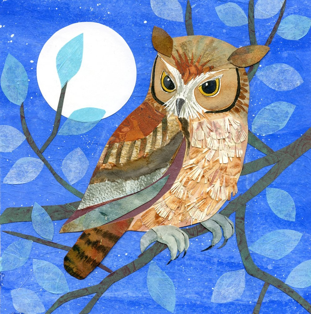 Screech Owl by Moonlight