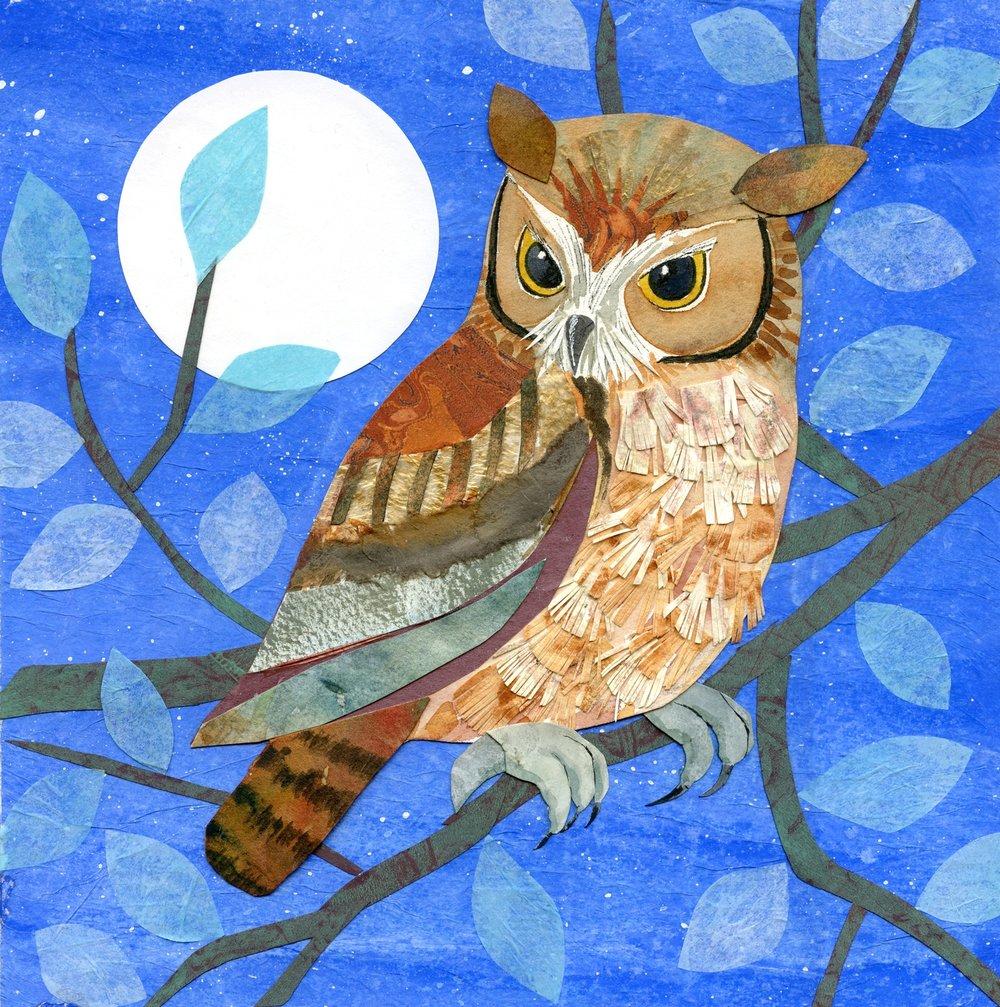 Screech Owl by Moonlight