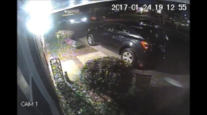 vehicle larceny.jpg