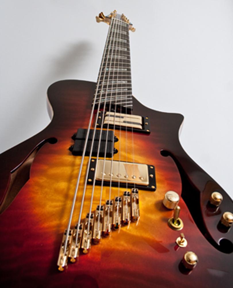 8 String guitar.jpg