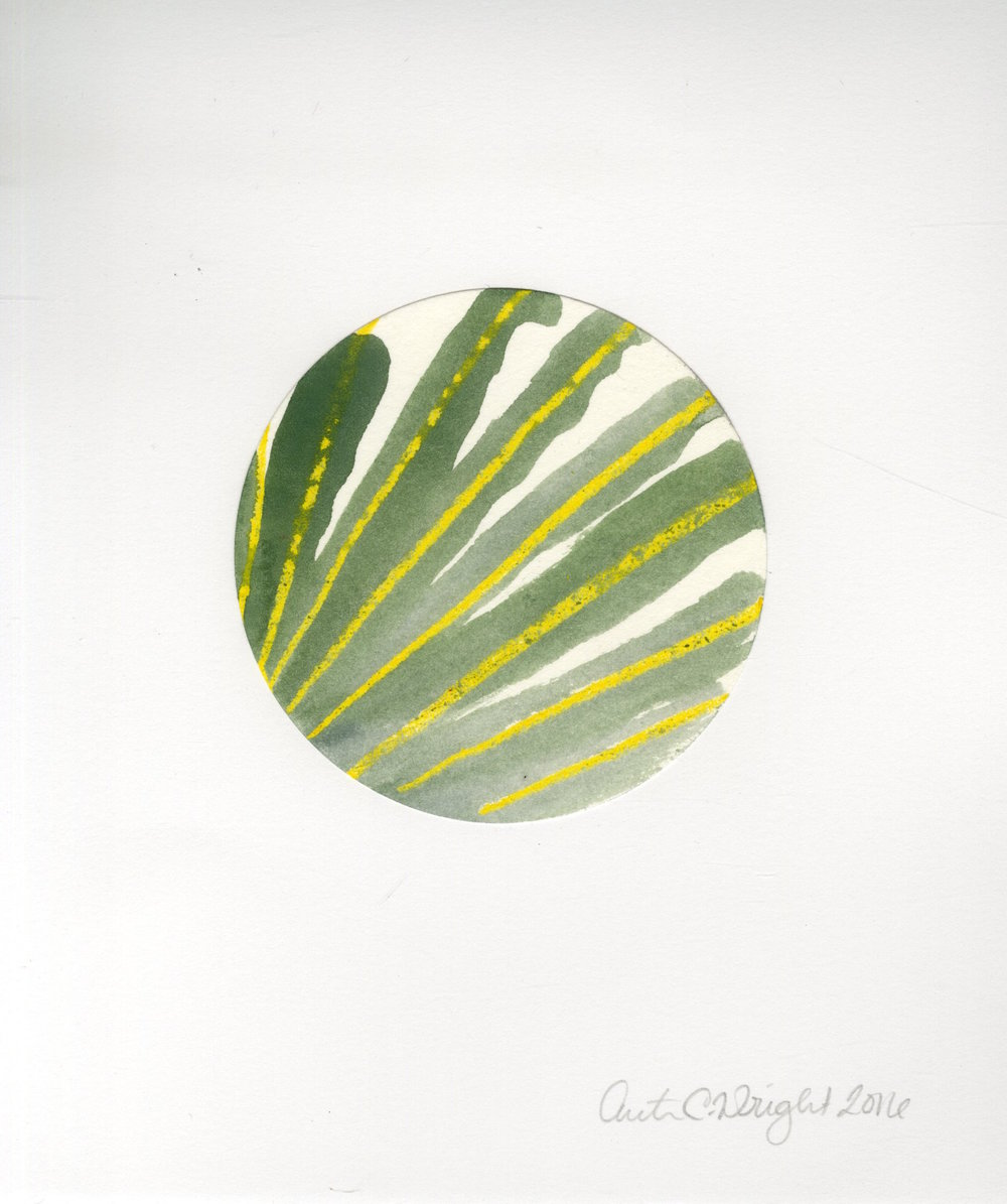 circle054.jpg