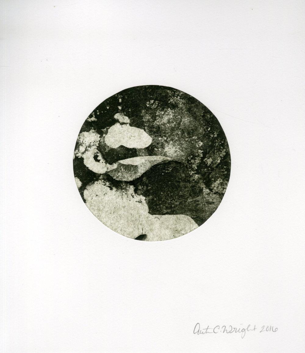 circle084.jpg