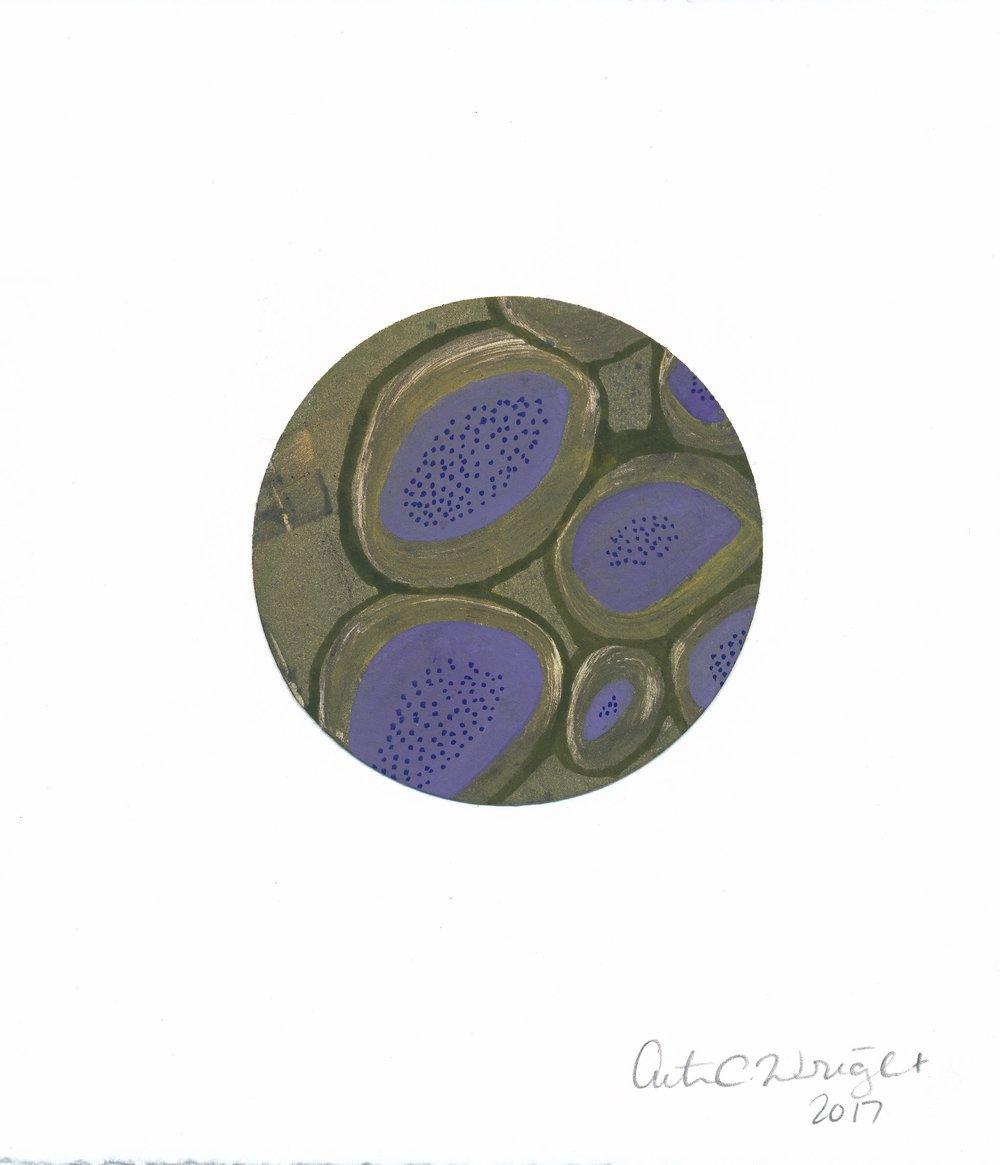 CircleS116.jpg