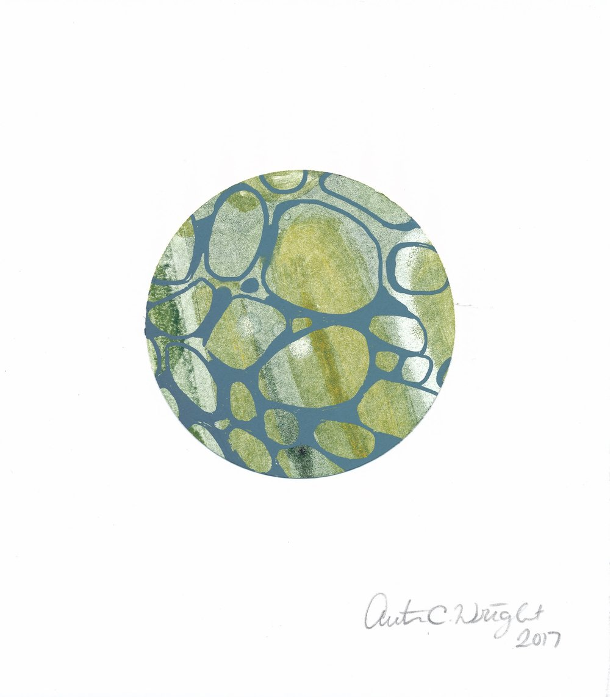 CircleS119.jpg