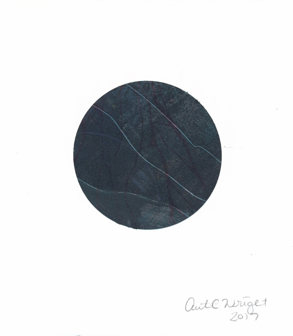 CircleS131.jpg