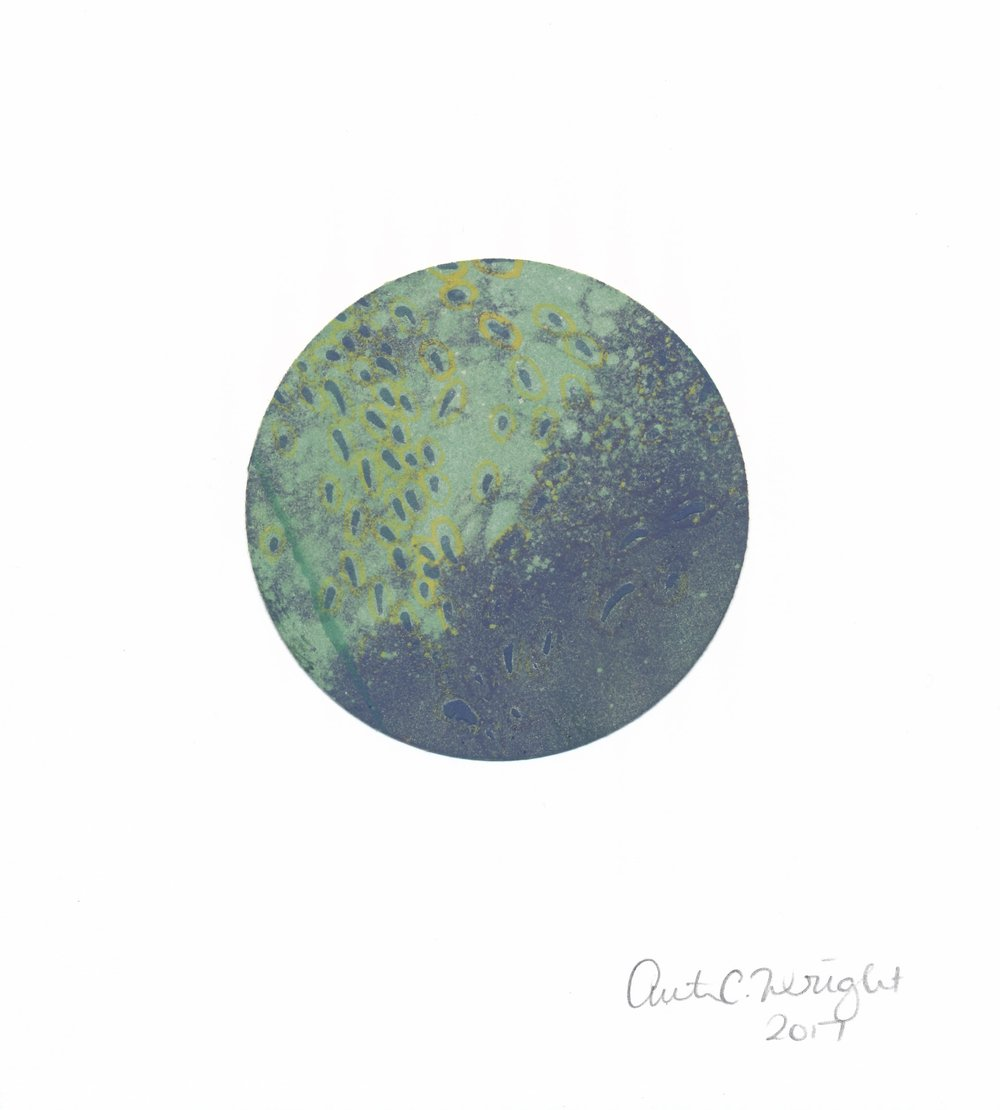 CircleS136.jpg