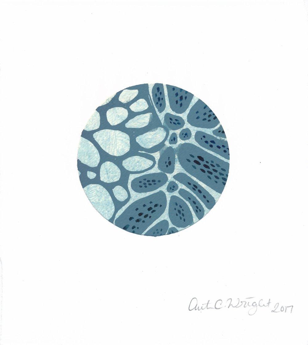 CircleS139.jpg