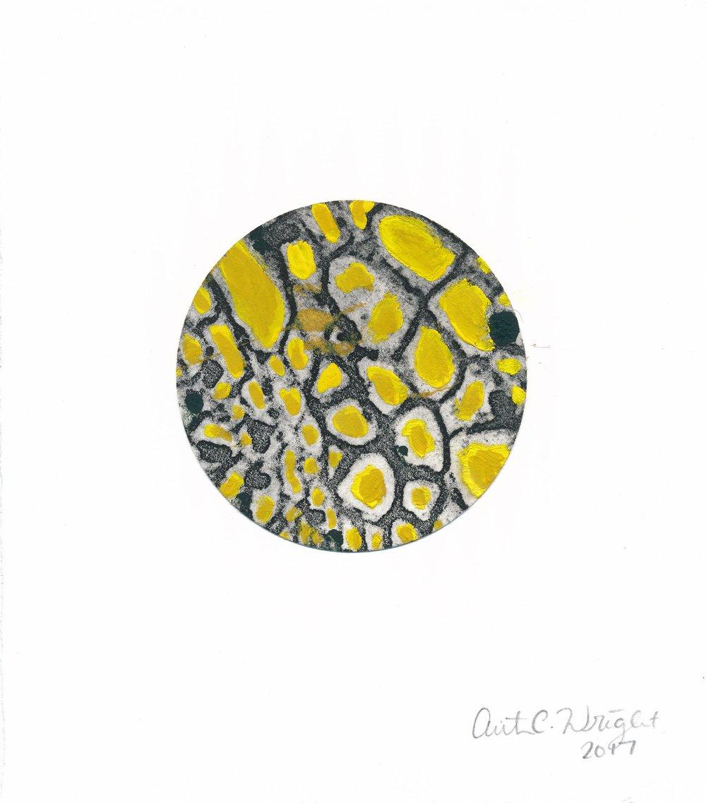 CircleS143.jpg
