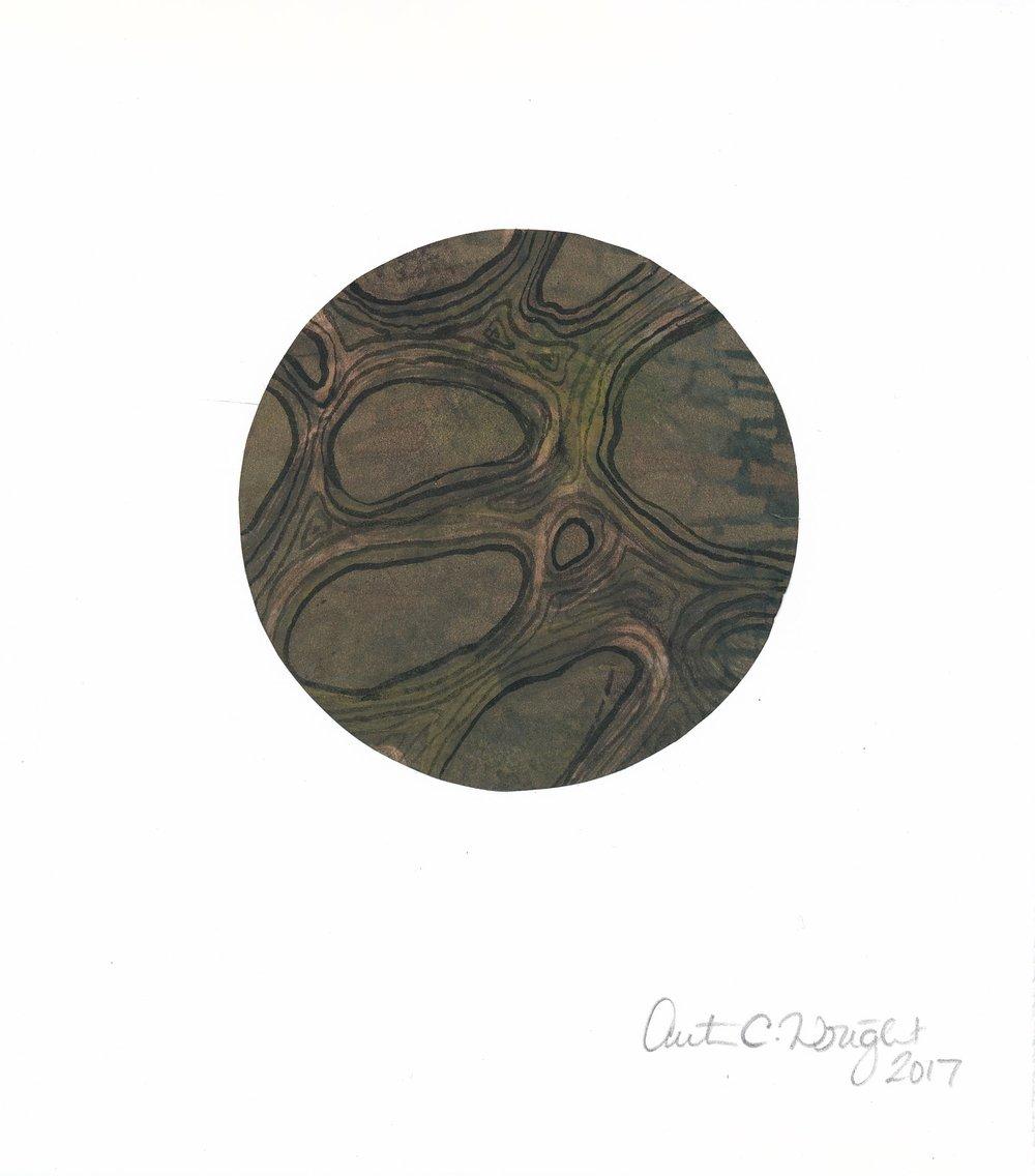 CircleS148.jpg