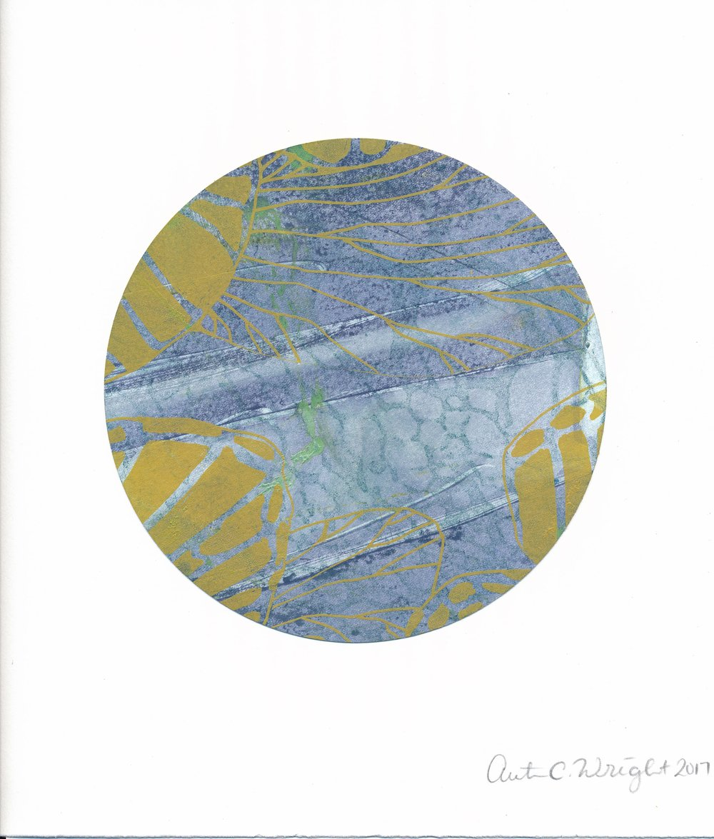 CircleS160.jpg