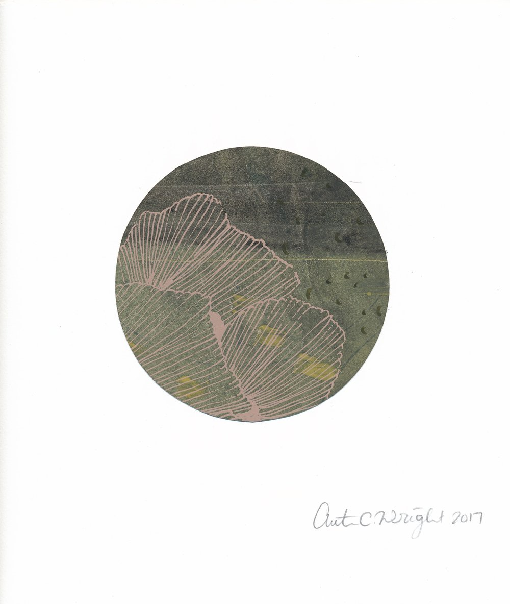 CircleS167.jpg