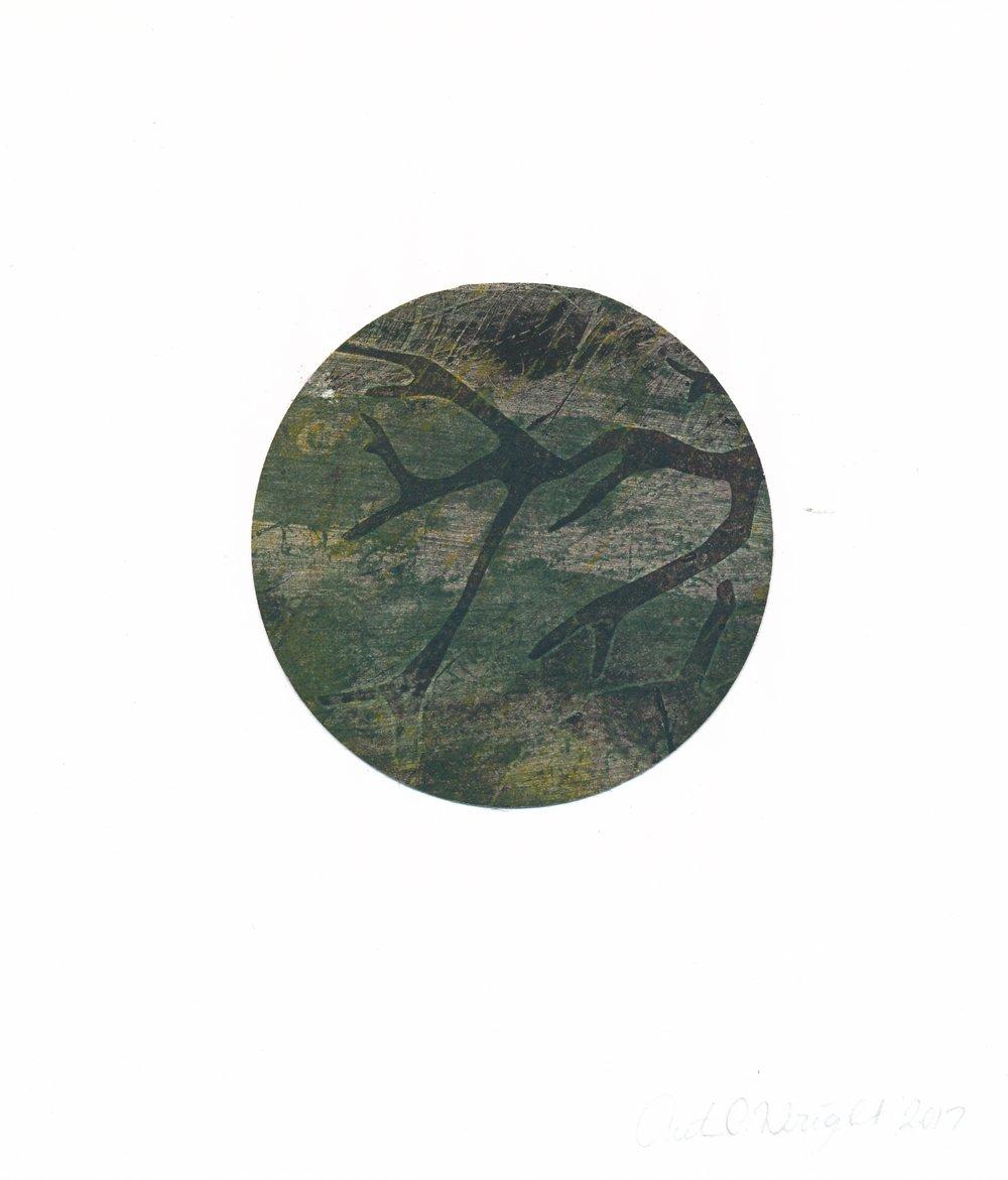 circle218.jpg