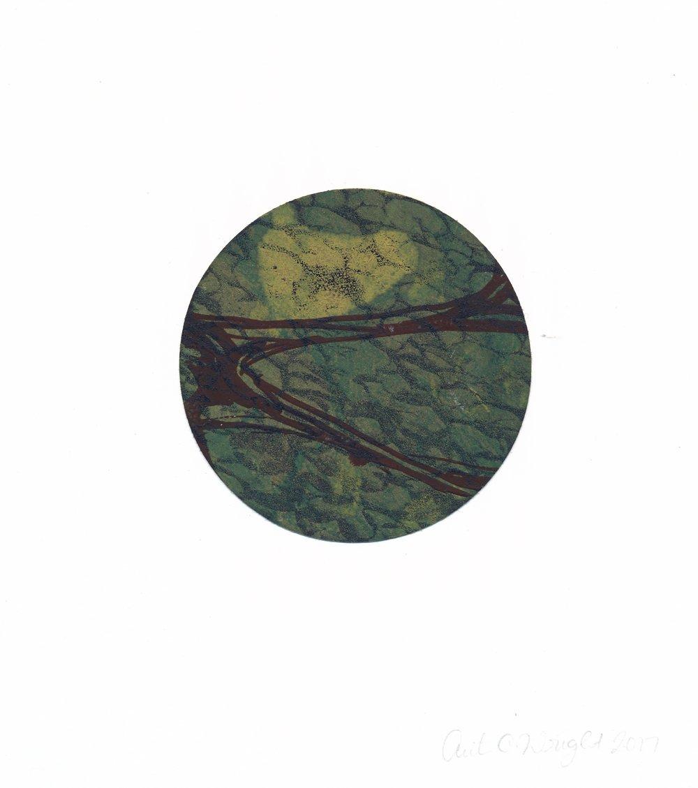 circle222.jpg