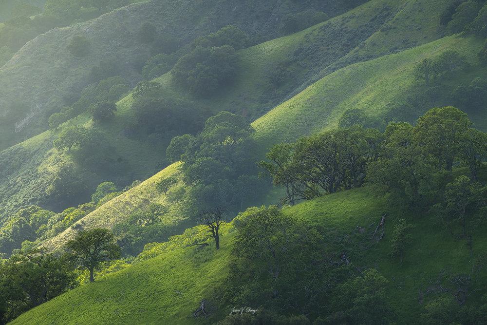 Green-Layers.jpg