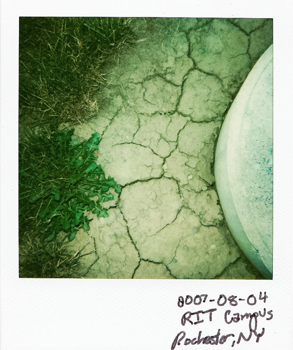 070804l.jpg