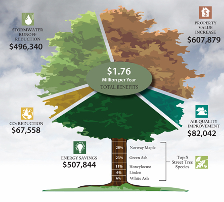 Benefits of Shade Trees (Source: Wisconsin Department of Natural Resources)