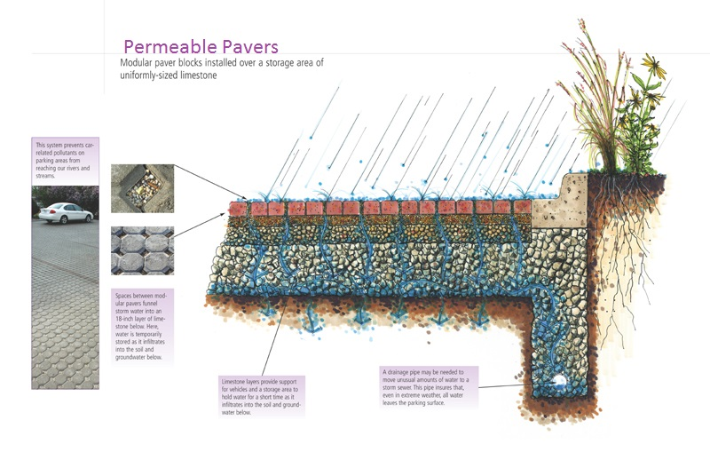 Permeable Pavement Illustration (Source: Illustration by Doug Adamson, RDG PLanning & design, provided by usda-nrcs in Des moines, iowa)