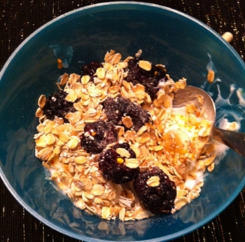 Greek Vanilla Yogurt with gluten free oatmeal, bee pollen and blackberries