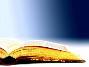 Bible5B_207140502_std