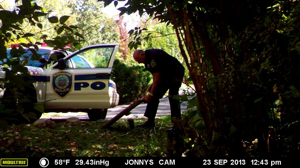 WIG 039 - Cop Steals ProGun Sign, Tactical Kittens and Easy