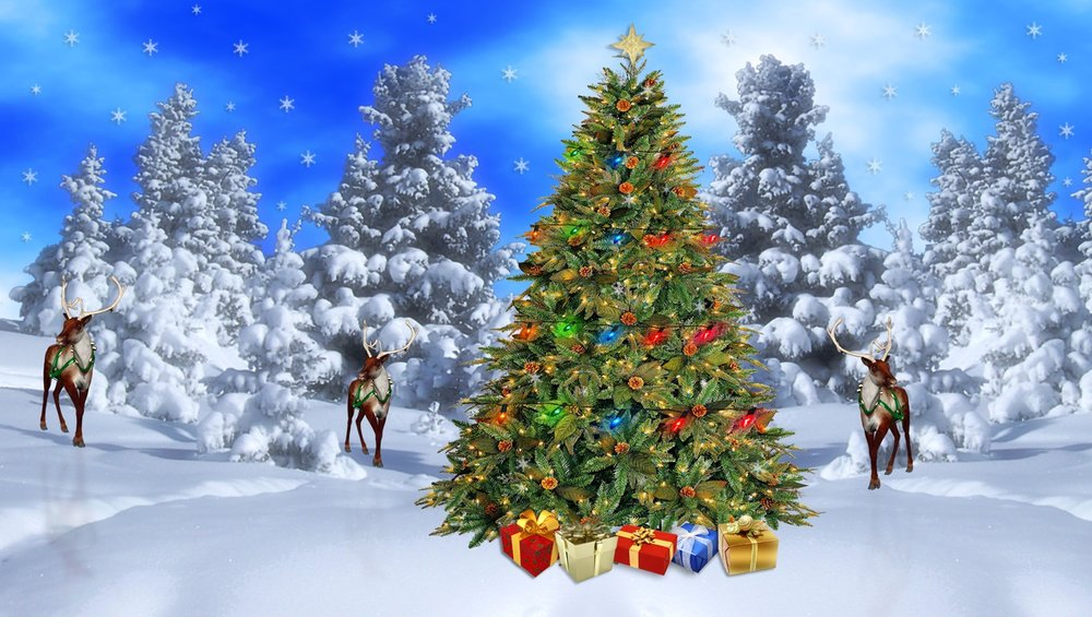 Christmas-Winter-Scene-Wallpapers.jpg