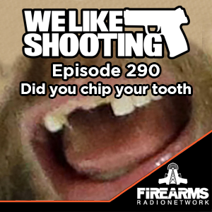 WLS 290 - Did you chip your tooth.png