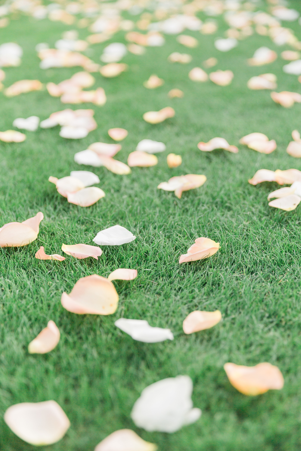 Rose petals on the aisle | Superstition Mountain Golf Club Wedding | Phoenix Wedding Photographers | See more at BetsyandJohn.com