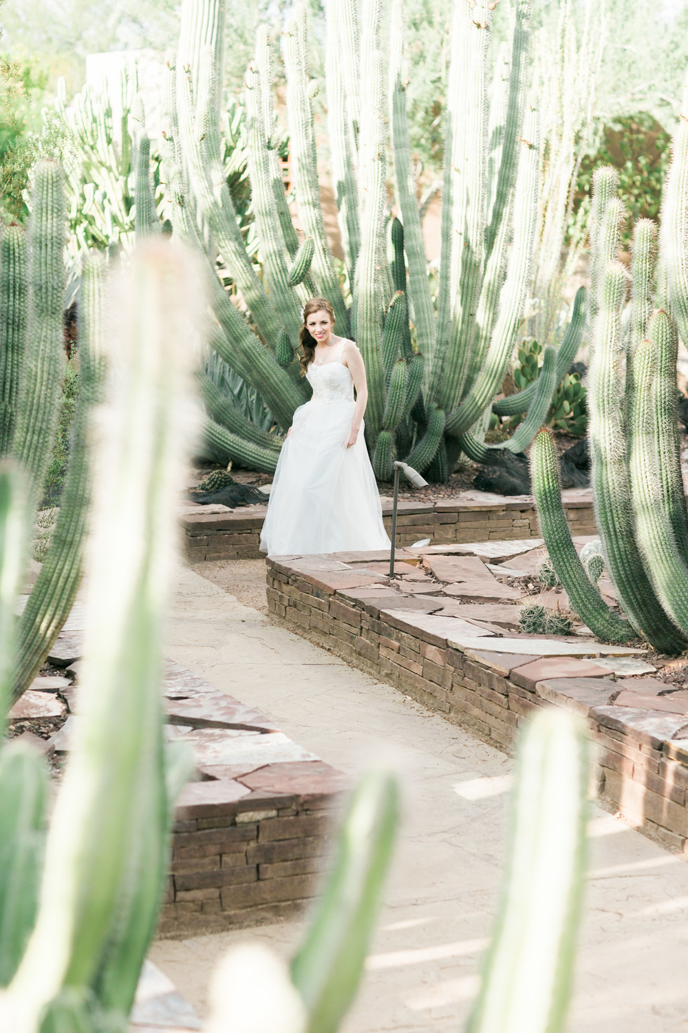Bride walking through the Desert Botanical Gardens on her way to the first look
