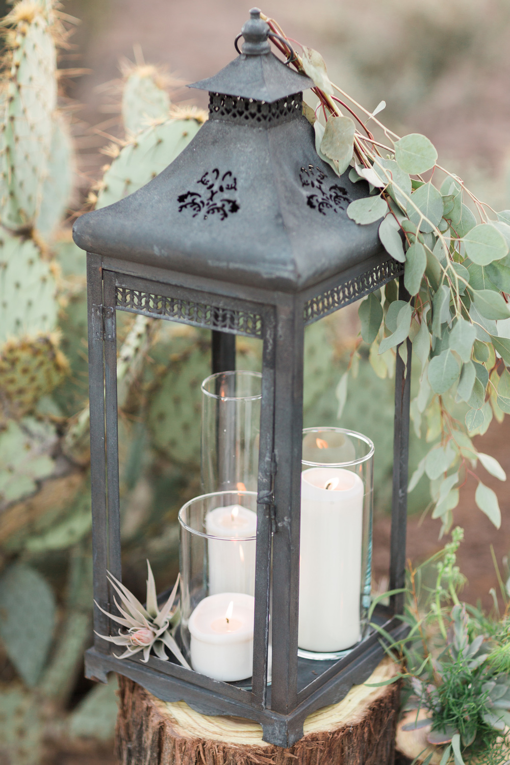 Beautiful lantern in the desert with candles, air plants and eucalyptus