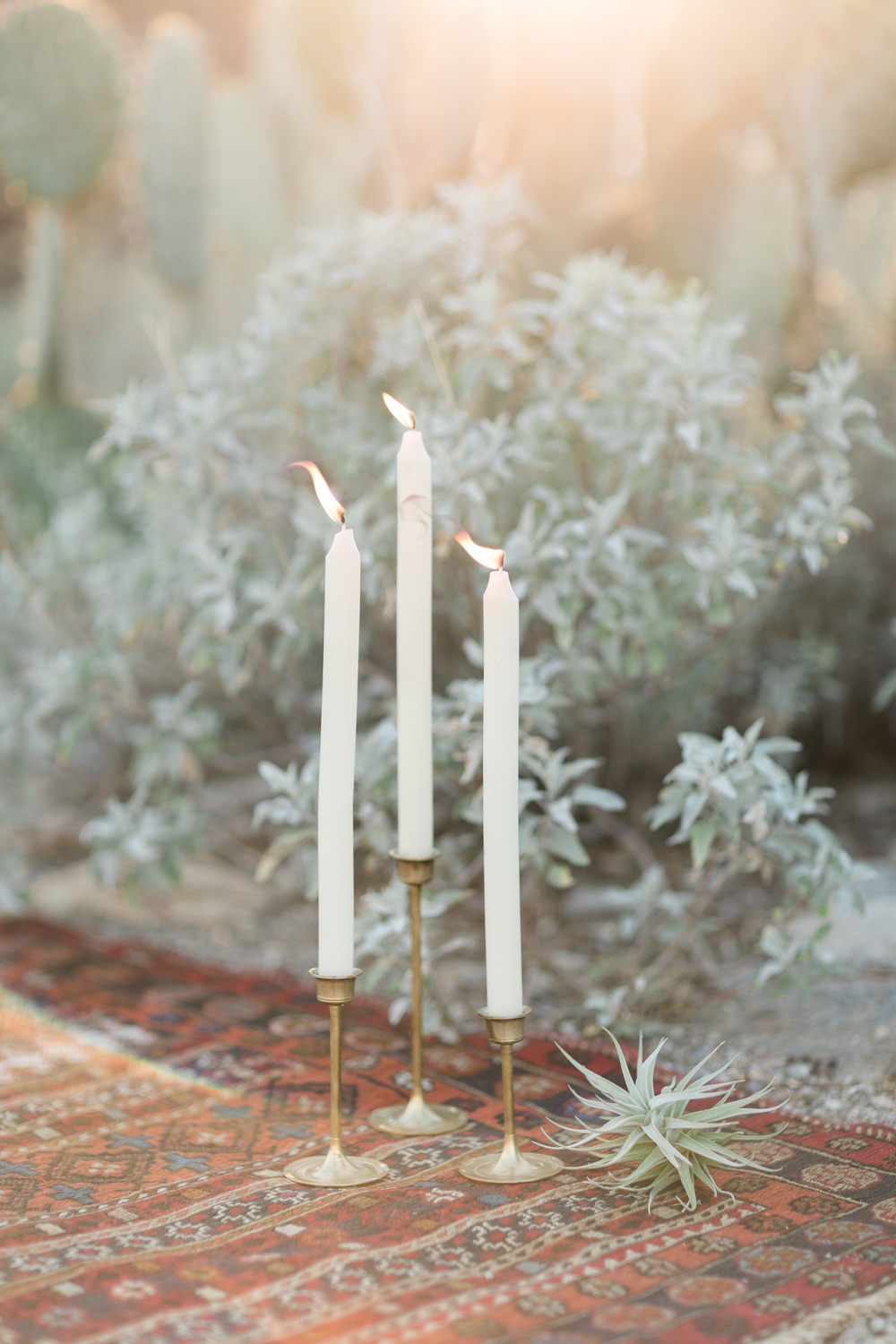 Candles and air plant on a red Turkish kilim rug