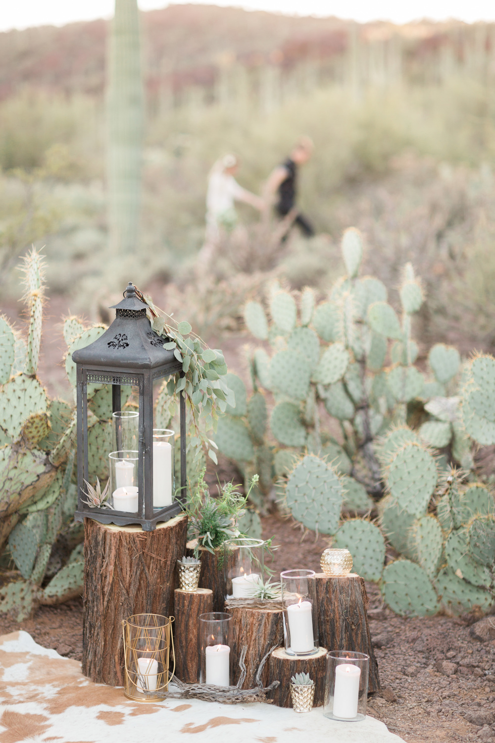 Romantic desert anniversary session. Wood stumps with candles, lanterns and air plants. Beautiful prickly pear cactus in the background.