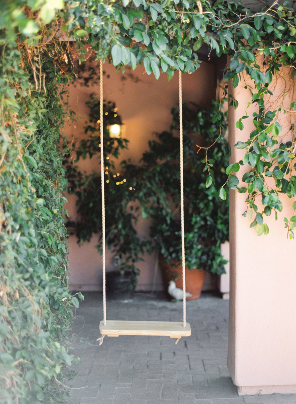 Swing in courtyard with vines