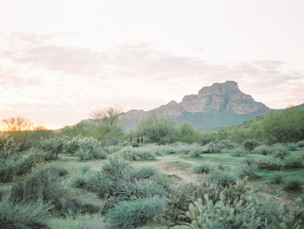 Stunning desert views with an incredible sunset in Phoenix, Arizona.