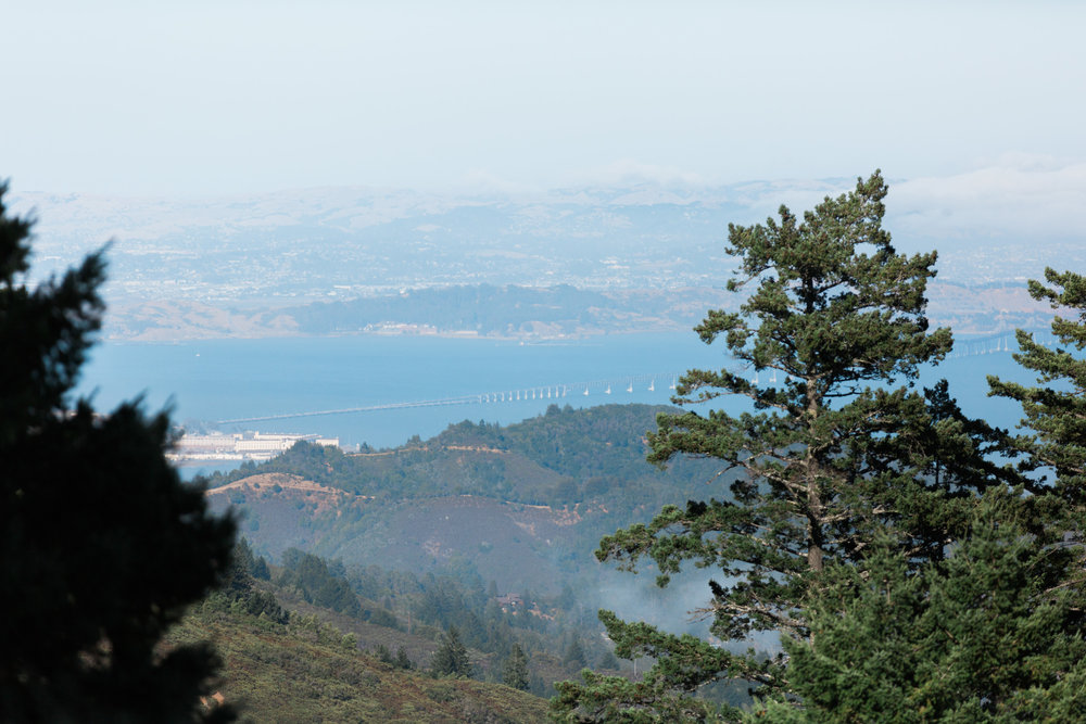 View from the top of Mount Tamalpais