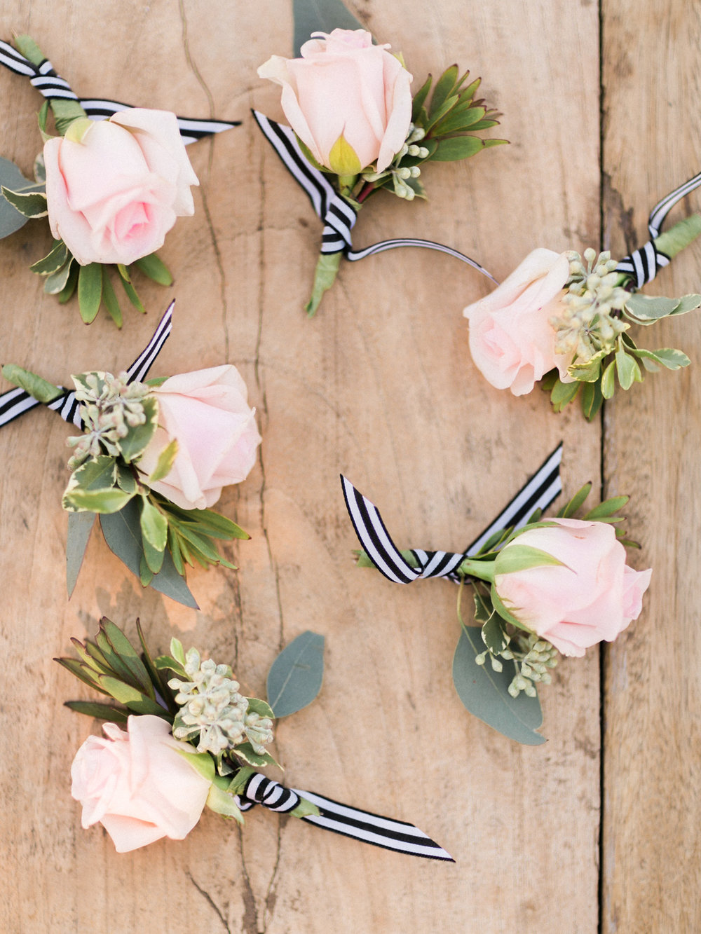 blush boutonnieres with striped black and white ribbon