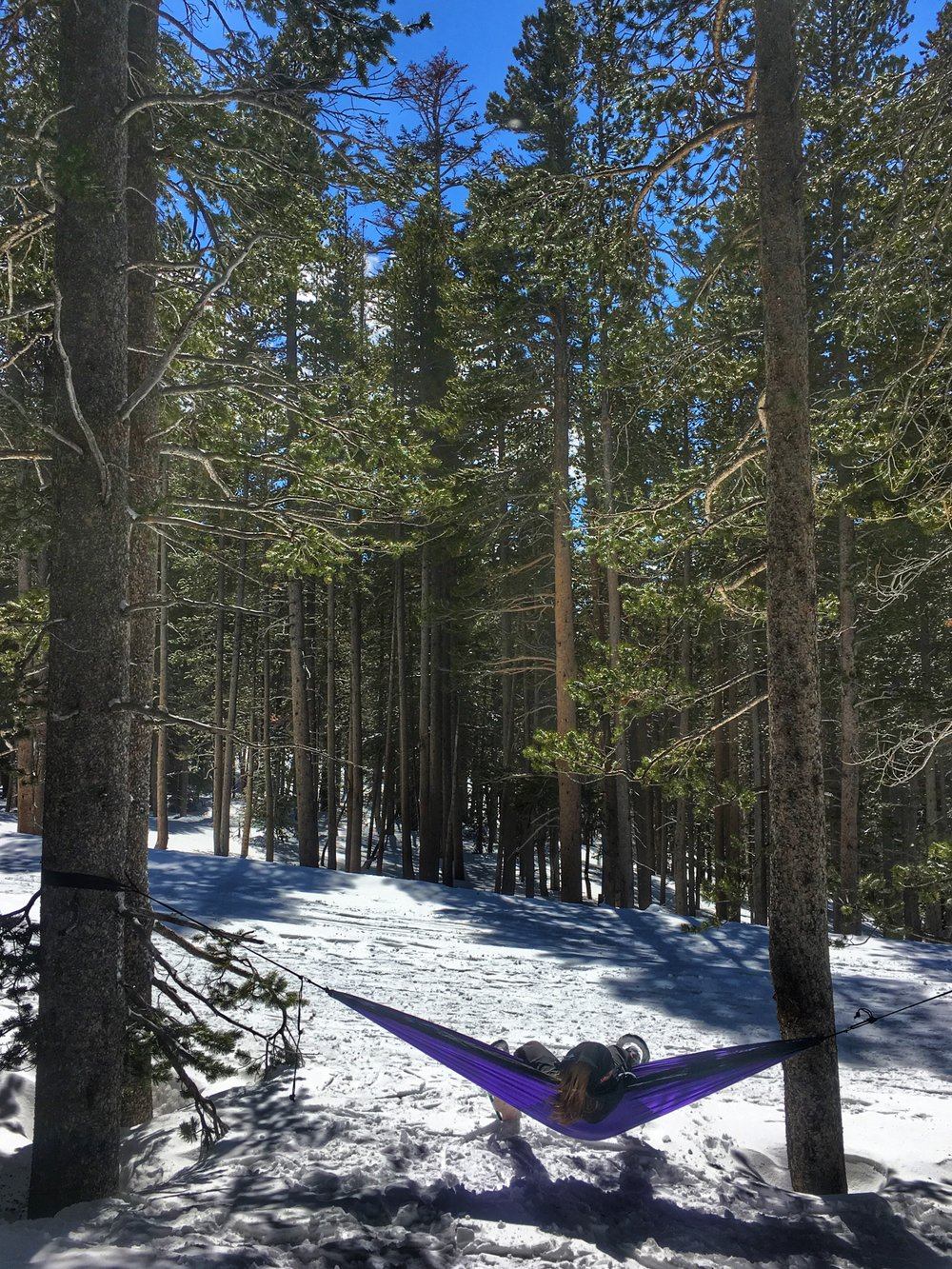 Don't forget your trusty hammock whenever you go on a snow shoeing adventure around Lake Mary basin. There are so many places to explore.