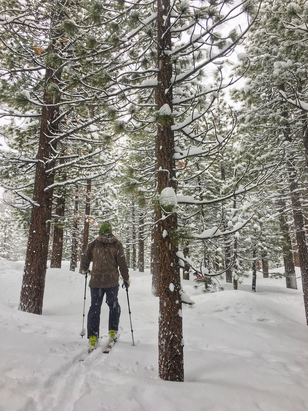 Cross country skiing through the trees during a snow storm at Shady Rest. Even the stormy days beg you go outside.