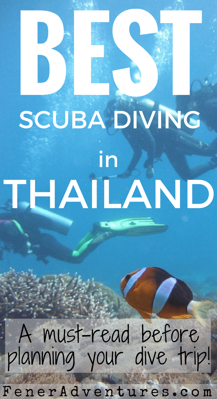 Best SCUBA Diving in Thailand. Read this article before planning your trip! ~ www.FenerAdventures.com | Dive sites Thailand | Learn to SCUBA Dive | Where to dive Thailand | Things to do | Asia | Budget Travel Ideas | Cheap diving | Affordable Vacation | Adventure Ideas | Exotic SCUBA Diving | Dive with Manta Rays