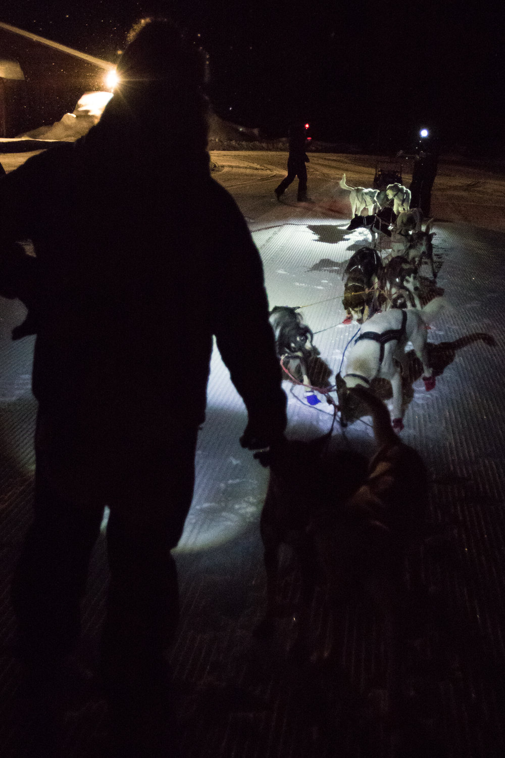A handler assists a musher as his team makes its way into checkpoint one late Saturday night.