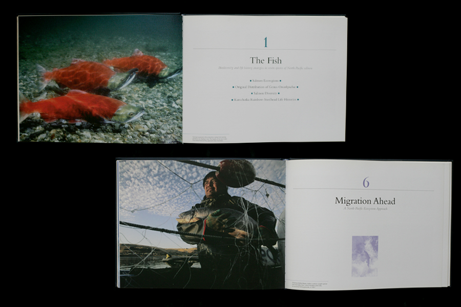Two different spreads from 'The Atlas of Pacific Salmon' (University of California Press).