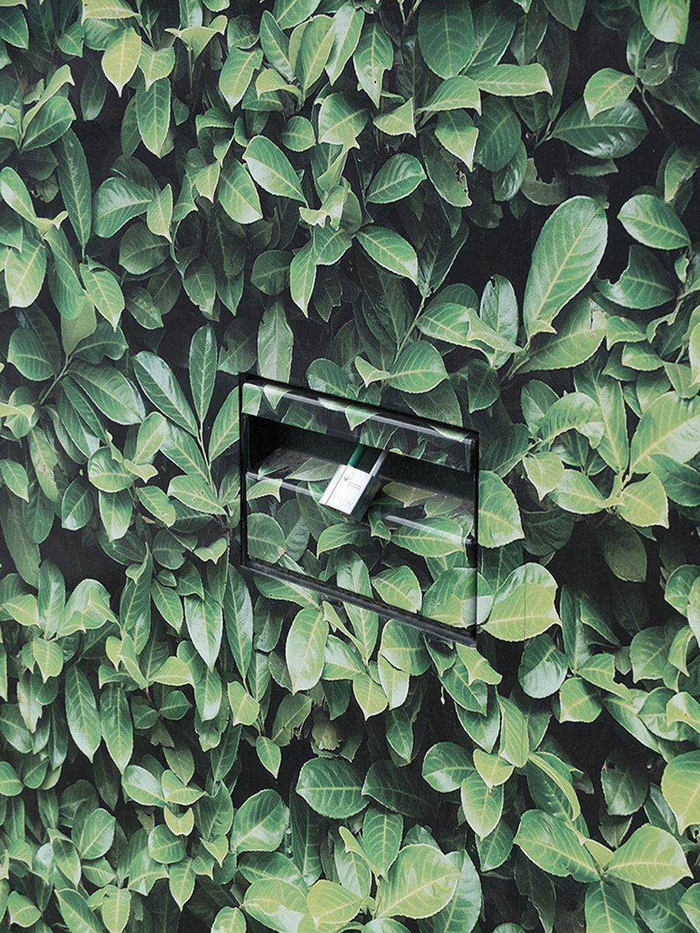 10 - york leaf.jpg