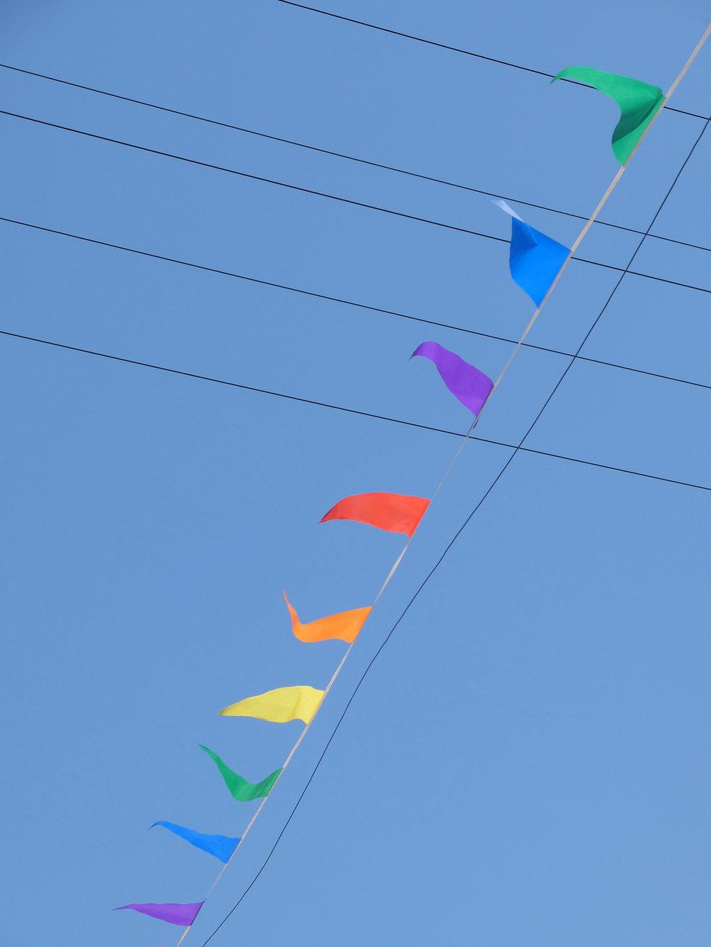 flags.jpg