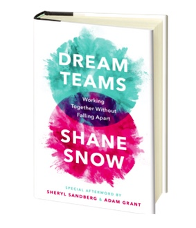 Dream Teams book cover.jpeg