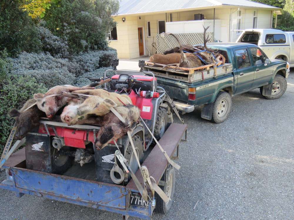 Heading home with a hell of a load for the poor old 2.8 Hilux