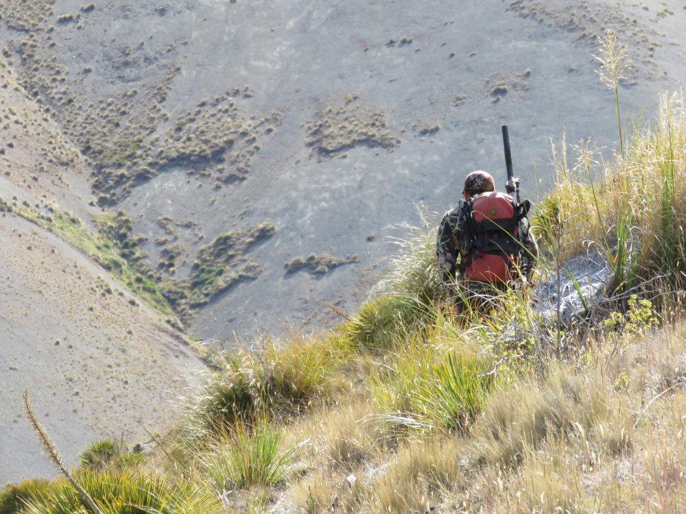 Taking a sneaky peak over the ridgeline.