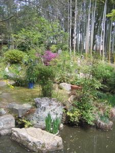 garden at kansetsu museum.jpg