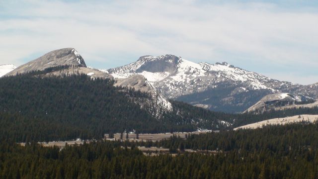 Tuolumne Peak and Meadows