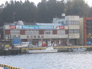 ohshima island.jpg