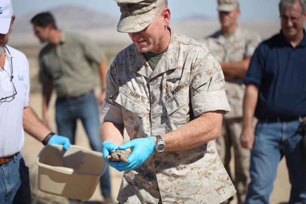 Combat Center Chief of Staff, Col. James F. Harp releases tortoise 2-4 during the Natural Resources and Environmental Affairs-hosted ceremony for the first release of tortoises from the Combat Center's Desert Tortoise Headstart Program. Official USMC photo by Lauren Kurkimilis/Released